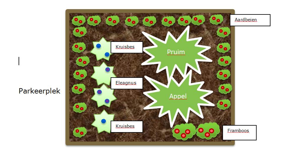 Plantschema