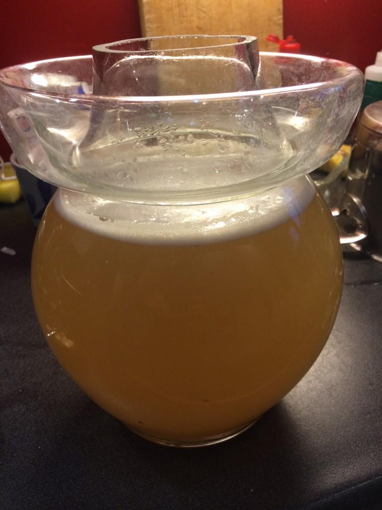 Natuurlijk fermenterende gemberdrank - prikkelende ginger ale!