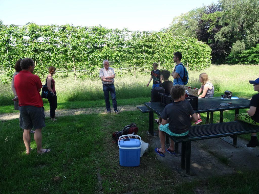 Rondleiding van Henk Kip, van Stichting Nationaal Lindenarboretum.