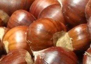 Gratis Workshop - Duurzaam Eten - Tamme Kastanjes @ Duurzaamheidscentrum de Veenweide | Soest | Utrecht | Nederland