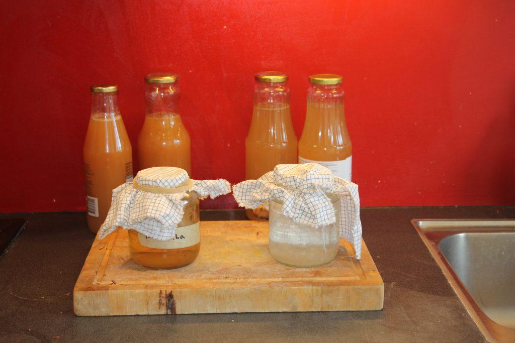 Gratis Workshop - Fermenteren - Natuurlijke frisdranken en wilde bier @ Duurzaamheidscentrum de Veenweide | Soest | Utrecht | Nederland