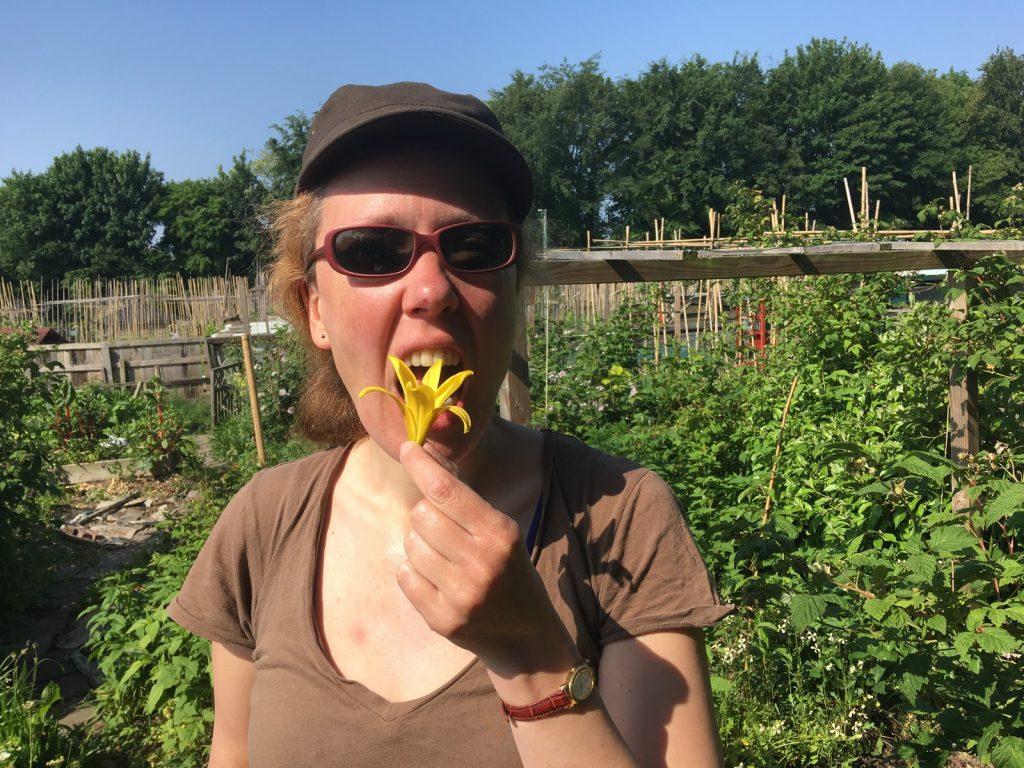 Open tuinendag in Clemenshof en De Veenweide - welkom! @ Duurzaamheidscentrum de Veenweide | Soest | Utrecht | Nederland