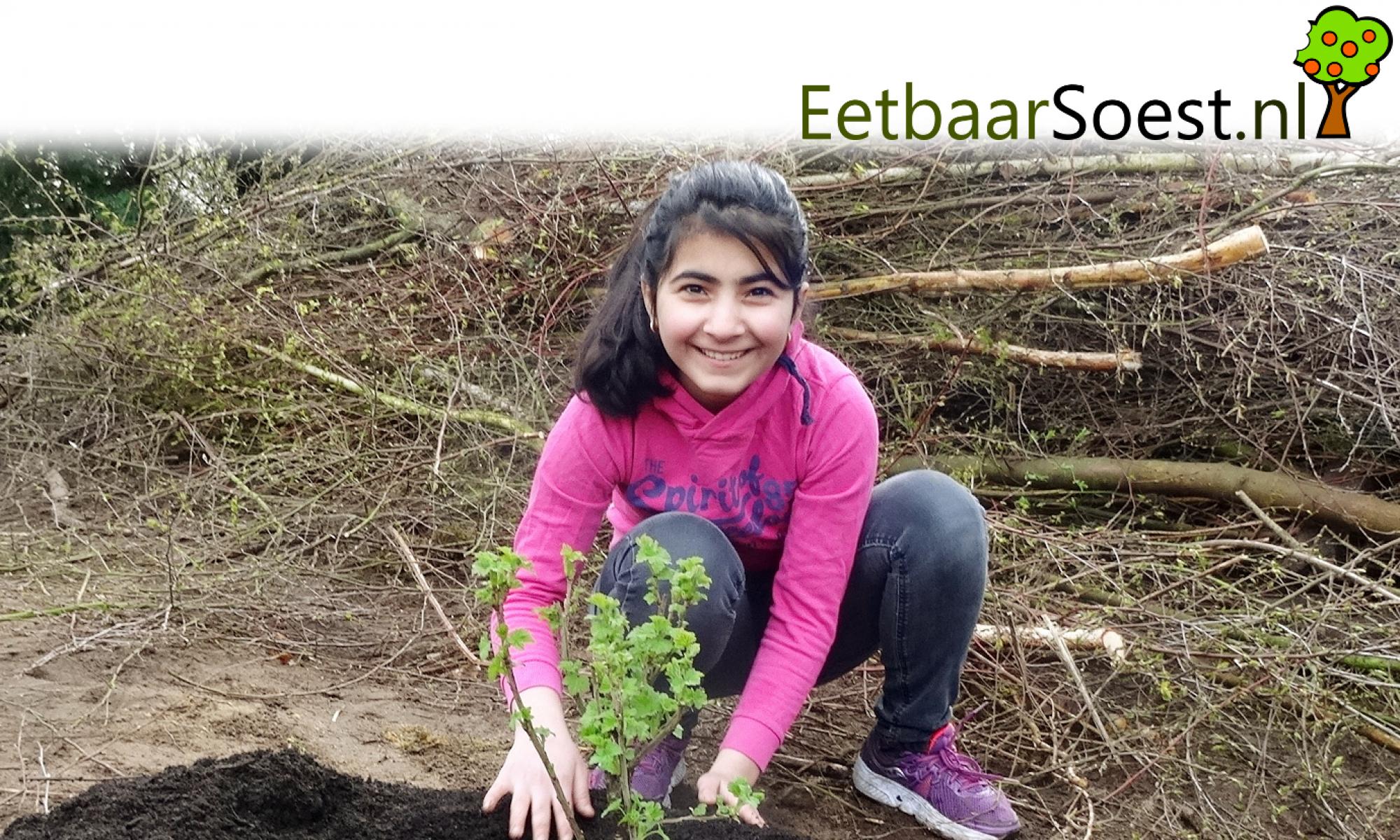 Eetbaar Soest  - Lekker & Ecologisch