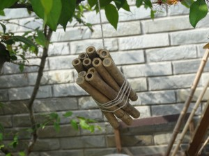 "Bee Hotel ""Bamboo Paradise"" - the clay that covers some openings indicate that a bee-mother has placed an egg inside."