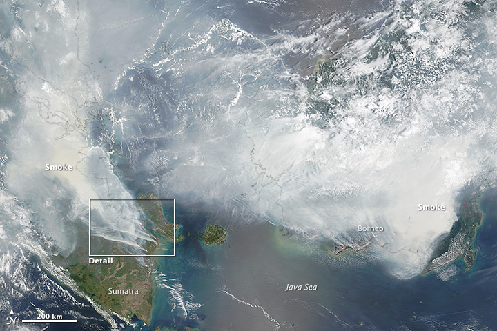 Borneo is almost completely covered in forest fire smoke.