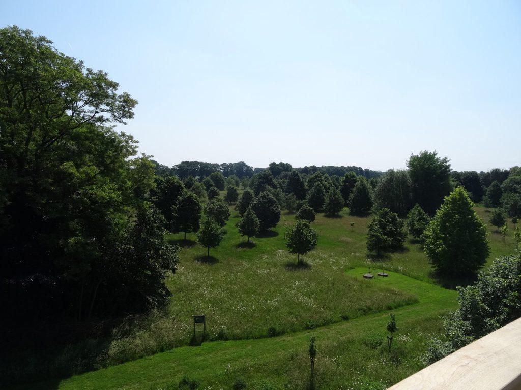 De lindebomen zijn geplant op een waterwingebied van Vitens - een bijzonder schone locatie.