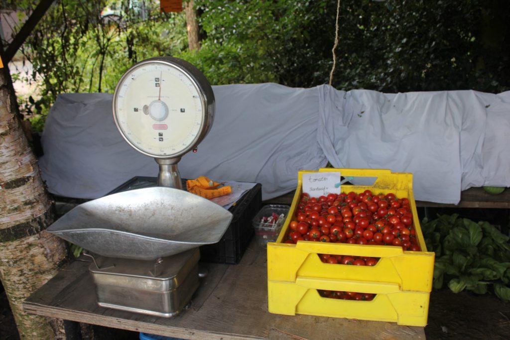 De tomaten