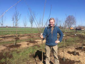 Gratis Workshop - Duurzaam Eten - Fruitbomen planten 2019 @ Duurzaamheidscentrum de Veenweide | Soest | Utrecht | Nederland